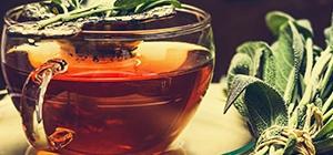 Chá | Alimentos benéficos para o fígado | Dieta | Holmes Place