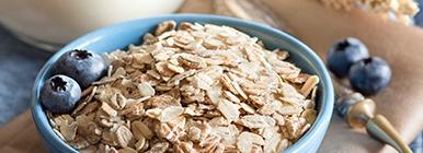Proteína de origem vegetal - cereais | Holmes Place