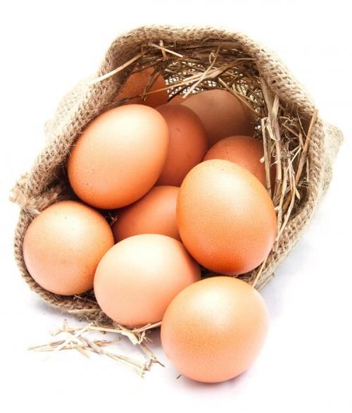 ernährung_lügen_eier