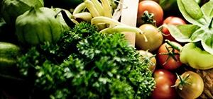 vegetais e fruta_dieta e esclerose multipla