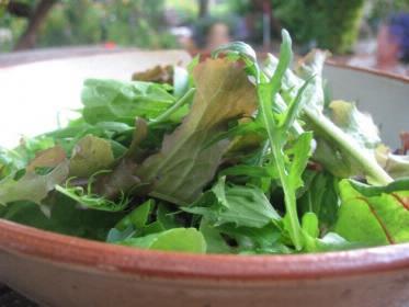 Gesunde Rezepte Salate 2