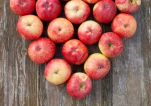 jabłka love