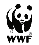 Shake Up October WWF