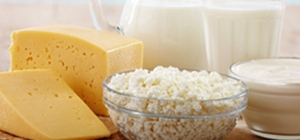 leite e queijos curados