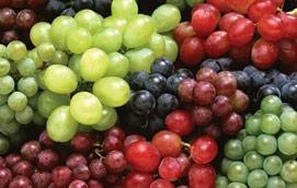 Uvas - frutas de verão | Holmes Place