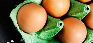 ovos dieta proteína