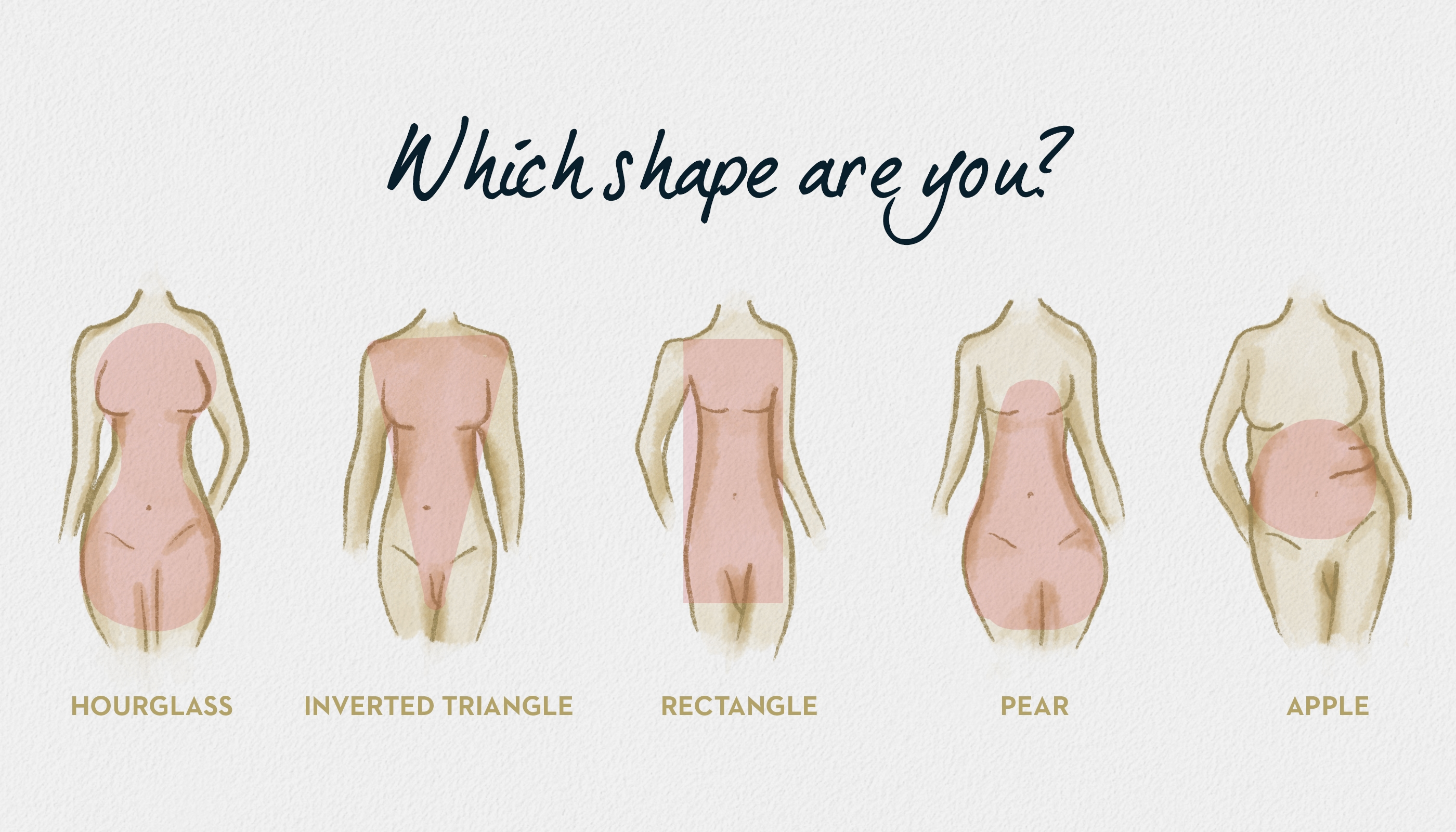 Which body type am I, different shapes drawing