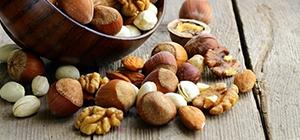 frutos oleaginosos_alimentos carro