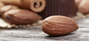 frutos secos dieta proteína