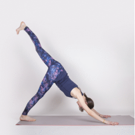 Dynamic core plank yoga 1