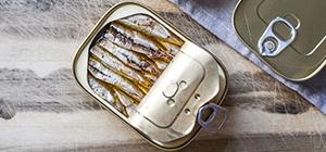 Sardinhas enlatadas | Comida processada | Dieta | Holmes Place