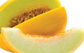 Melão - frutas de verão | Holmes Place