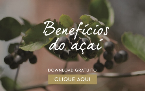 download receitas açai dieta