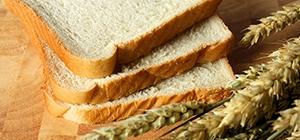 Pão   Hidratos de carbono e proteína   Holmes Place