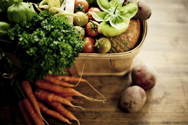 inside 11 Nutrition ALPHABET