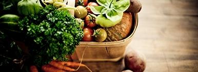 Vegetais para dieta vegan | Holmes Place